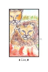 Lion - watermarked